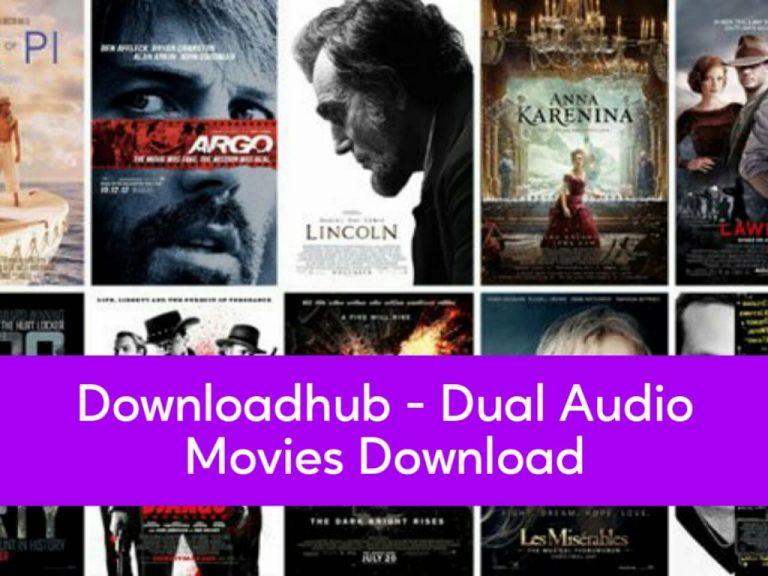 Downloadhub  – 300MB Dual Audio Movies Download
