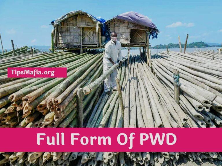 PWD क्या होता है | PWD Full Form in Hindi