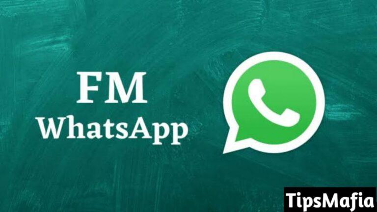 FM WhatsApp डाउनलोड और अपडेट कैसे करे